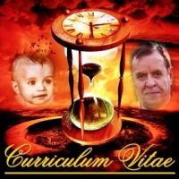 Curriculum Vitae J.A.L.R. 001