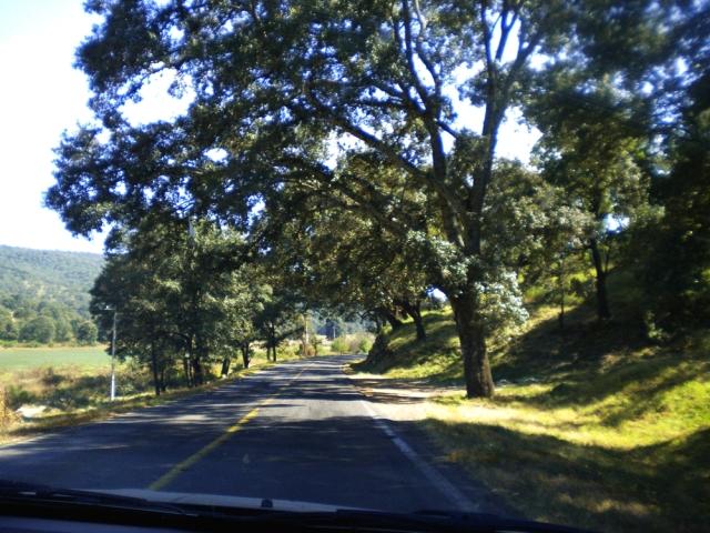 03 Hacia Morelia 16-12-2012 (4)