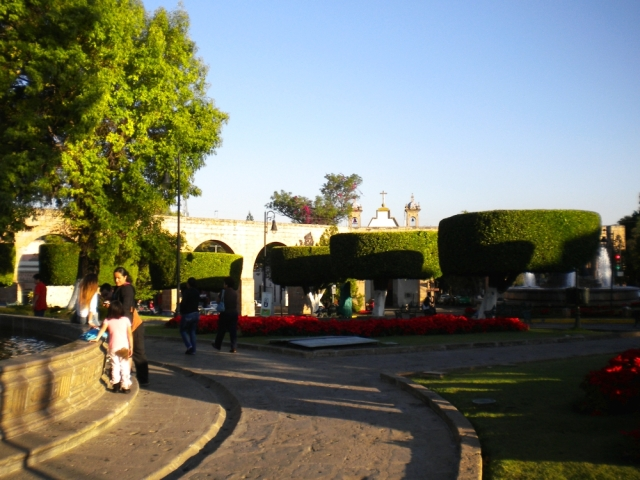 04 a la llegada a Morelia (31)